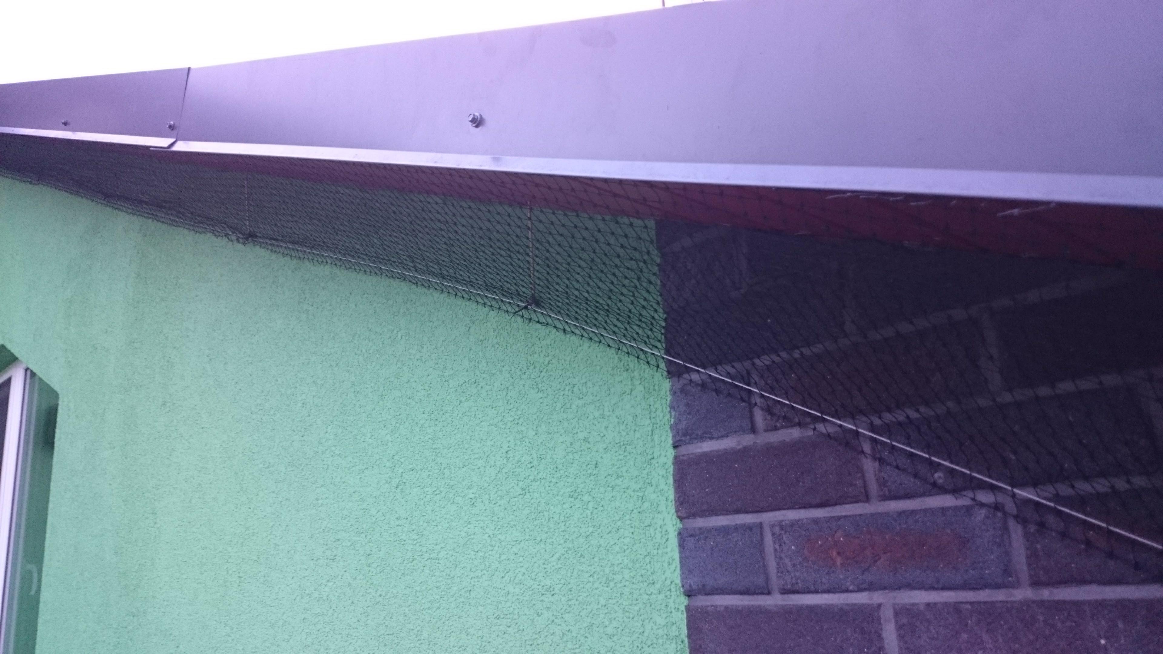 Tinklas nuo kregždžių, sumontuotas po stogo atbraila.